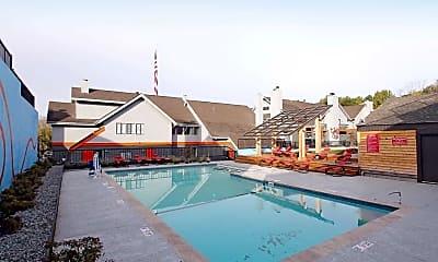 Pool, Terrain, 1
