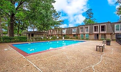 Pool, 12633 Memorial Dr 121, 2