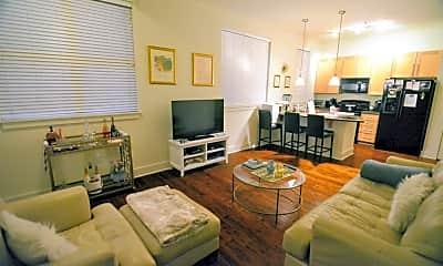 Living Room, 650 S Mill St 117, 0