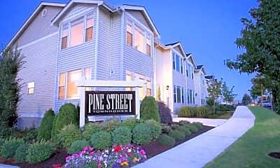 Pine Street Townhomes, 0