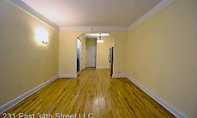 Living Room, 231 E 34th St, 0