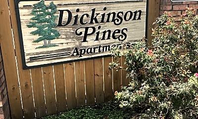 Dickinson Pines, 1