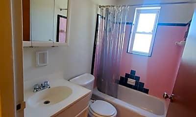Bathroom, 3853 Delmar Ave, 2