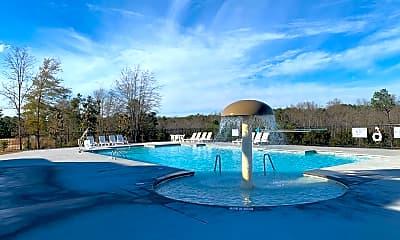 Pool, 763 Spring Cress Dr, 2