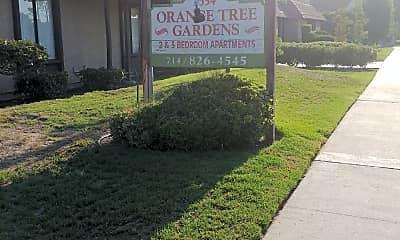 Orange Tree Garden, 1