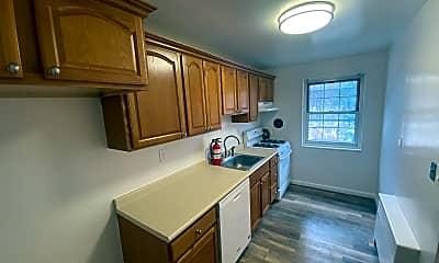Kitchen, Llewelyn Terrace, 1
