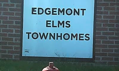 Edgemont Elms, 1