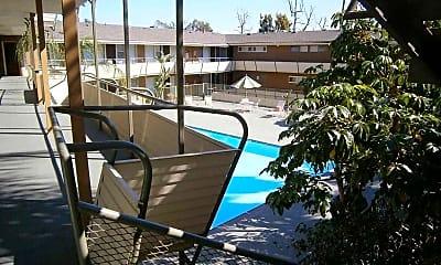 Pool, Terraces at South Pasadena, 1