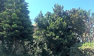 Carlsbad Pines, 2