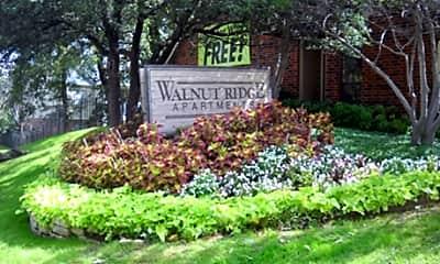 Walnut Ridge, 1