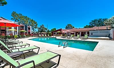 Pool, Spring Meadow Apartments, 0
