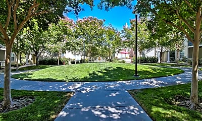 Landscaping, Catalina Luxury Apartments, 2