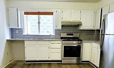 Kitchen, 132 Albion St, 1