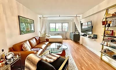 Living Room, 401 E 65th St, 0