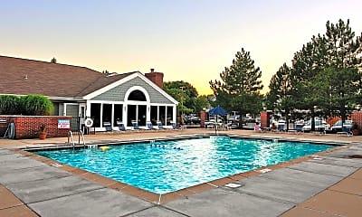 Pool, Savannah Trace Apartments, 1