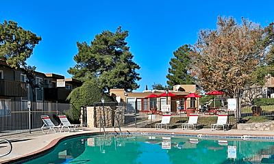 Pool, Lake Fairway, 0