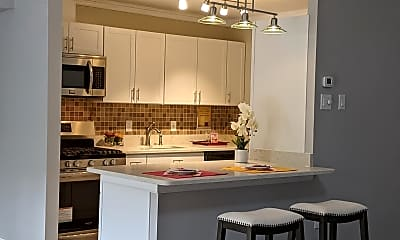 Kitchen, 5250 Valley Forge Dr 216, 0