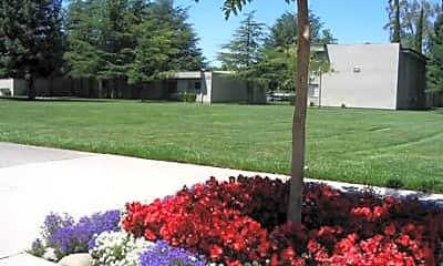 Building, Sunset Park, 1