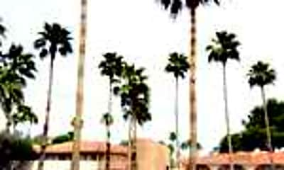 Windsor Palms Apartments, 0