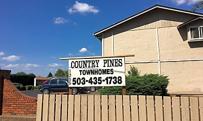 Country Pines, 1