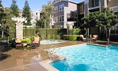 Pool, Morgan Park, 1