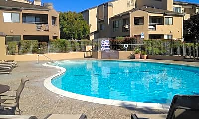 Pool, 39224 Guardino Dr, 1