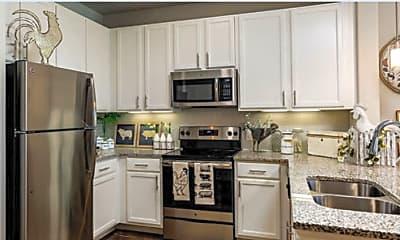 Kitchen, 8787 Legacy Dr, 2