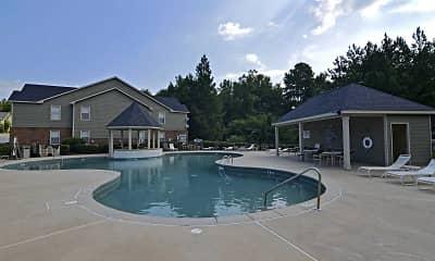 Pool, Summer Tree Apartment Homes, 1