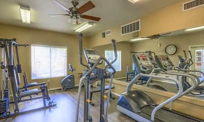 Fitness Weight Room, The Villas on Bell, 1