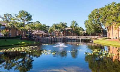 View, The Oasis at Wekiva, 0
