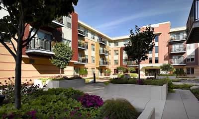 Courtyard, Sequoya Commons, 0
