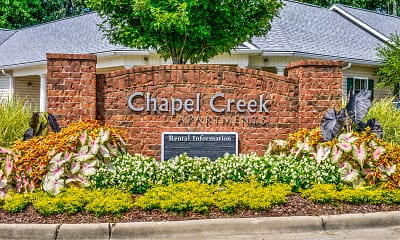 Chapel Creek, 2