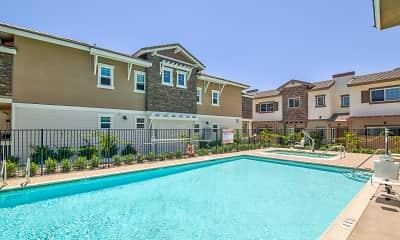 Pool, Coastal Living at San Marcos 55+, 0