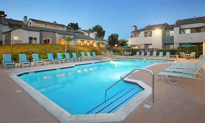 Pool, Villa Solana, 2