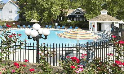 Pool, Piccadilly Apartments, 0