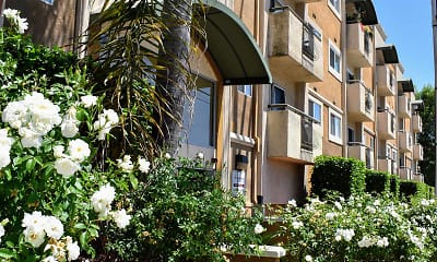 Terraces at Madrona, 1