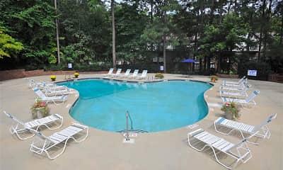 Pool, Brook Pines, 1