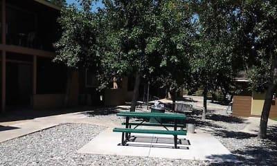 Courtyard, Nevada Hills, 1