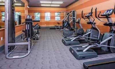 Fitness Weight Room, Wellington Club, 2