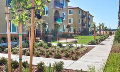 Building, Campus Oaks Apartments, 0