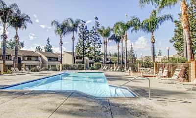 Pool, Tamarack Gardens, 1