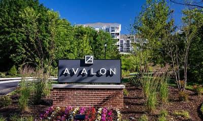 Avalon Boonton, 2