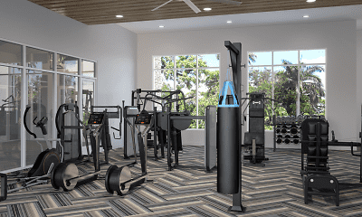 Fitness Weight Room, The Atlantic, 2