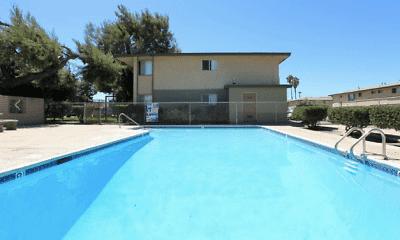 Pool, Shady Lane Apartments, 0