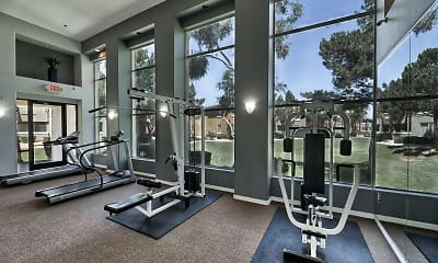 Fitness Weight Room, Desert Sage Luxury Homes, 2