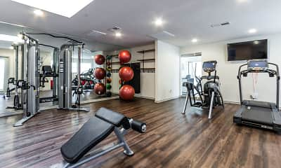 Fitness Weight Room, The Tenison at White Rock, 2
