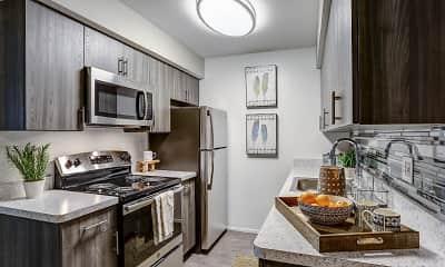 Kitchen, Ann Arbor Woods, 1