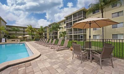 Pool, Palm Ridge Apartments, 2