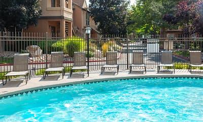 Pool, Vine Gate, 0