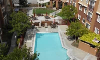 Pool, Canyon Country Senior, 0